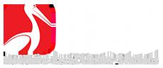 خدماتنا المبتكرة لتصميم مواقع الانترنت والتسويق الإلكتروني في مصر